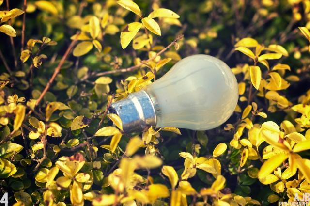 電力自由化の未成熟と違約金リスク