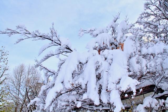 電力自由化で北海道民の電気代はどう変わる?