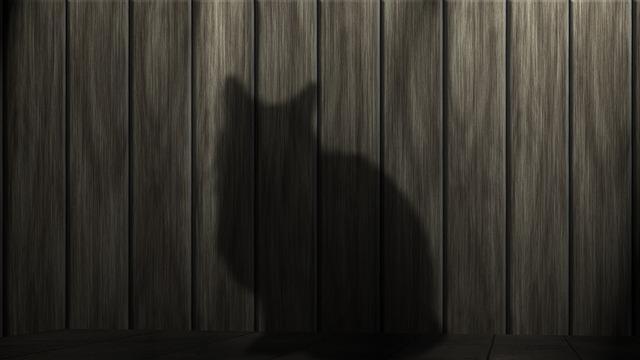 電力自由化スイッチング猫