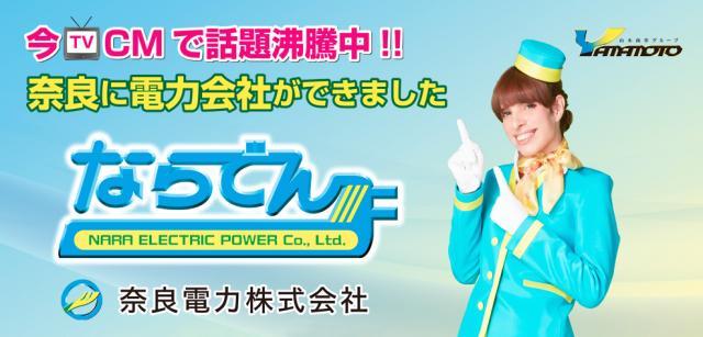 奈良県初の新電力!奈良電力の電気料金プランを解説