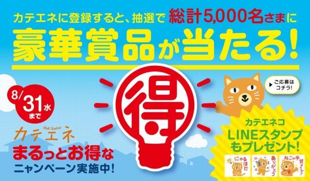中部電力カテエネ『まるっとお得なニャンペーン』キャンペーン