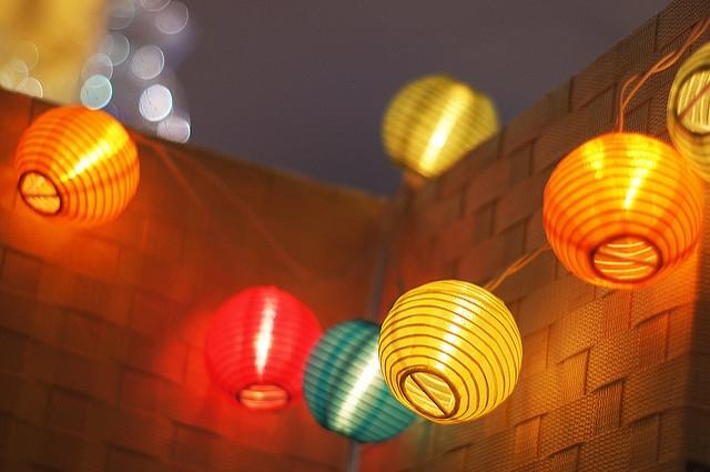 中国電力の新しいサービスと電気料金プラン