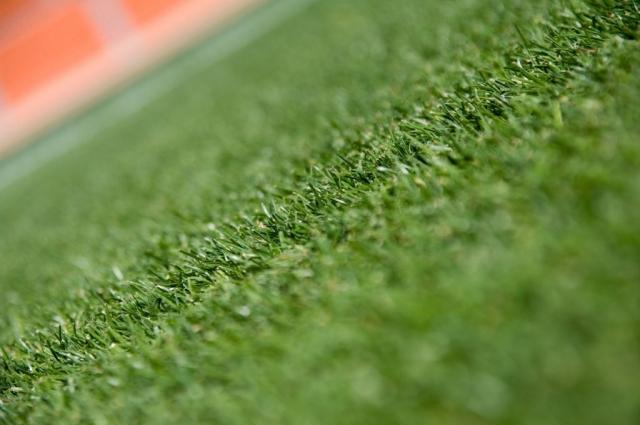 サッカーグラウンドの芝