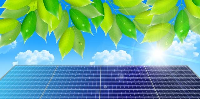 太陽光パネルと緑